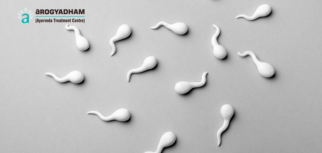 Low Sperm Count? how to increase sperm count