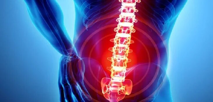 Ayurvedic Treatment for Back Pain in Hamirpur